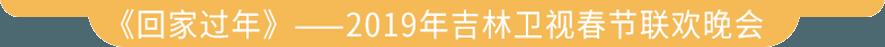 《回家过年》——2019年吉林卫视春节联欢晚会宣传片